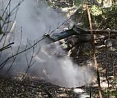 Volcanic Fumarole