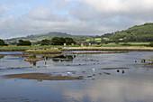Devon Wetlands Nature Reserve