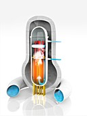 Boiling water nuclear reactor