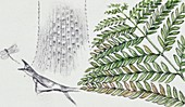 Fern and ancient lizard,illustration