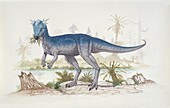 Side profile of a dinosaur,illustration