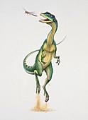 Liliensternus hunting,illustration