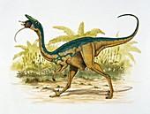 Sauronithoides,illustration