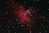 Eagle Nebulai M16 in Serpens