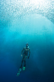 Freediving,the Philippines