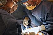 Laparotomy intestinal surgery