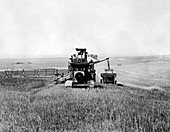 Combine harvester and thresher,1936