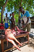 Man butchering a pig