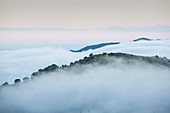 Morning Mist above Shire Valley,Malawi
