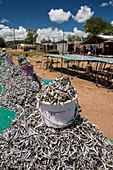 Fish caught in Lake Malawi,drying racks