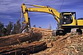 30 ton excavator
