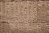 Hieroglyphs at the Temple of Philae