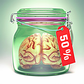 Human brain in glass jar with sale label