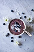 Blueberry smoothie bowl topped with coconut flakes and fresh blueberries