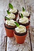 Chocolate cupcakes with buttercream roses and mint