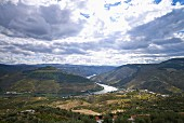 The Douro Valley in Vale de Mendiz, Portugal