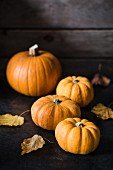 Several pumpkins with autumn leaves