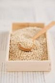 Sesame seeds with a spoon in a wooden box