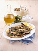 Grilled mackerels with rosemary