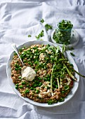 Barley and coconut-milk risotto with peas, baby leeks and feta