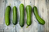 Five mini cucumbers in a row