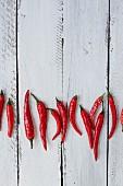 Mehrere frische rote Chilischoten auf weißem Holzuntergrund