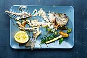 Essensreste und Karkasse einer Dorade auf Servierplatte