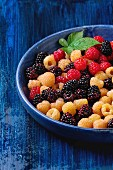 Blue ceramic plate of colorful yellow and red raspberries and black dewberry with leaf