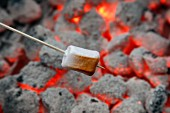 A marshmallow being grilled