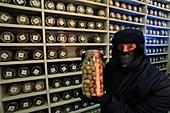 Millennium Seed Bank's cold storage vault