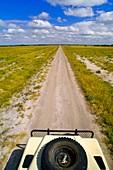 Land Rover on dirt road,Botswana