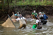 Fish survey in a river