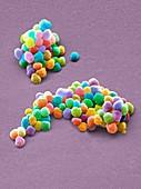 Microbeads,SEM