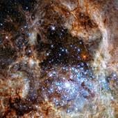 R136 star cluster,HST image