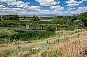 Wildlife refuge,Colorado,USA
