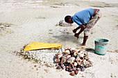 Man preparing seashells for sale
