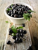 Fresh sloe berries in a bowl on wood