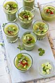 Grüne Gazpacho mit Gurken, Sellerie, grüner Paprika, roter Chili und Koriandergrün