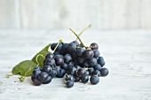 Fresh Concord grapes on a wooden surface