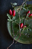 Rose hips on green stoneware plate on black surface