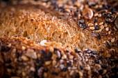 A close-up of a bread crust