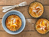 Apricots cakes with vanilla and icing sugar