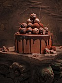 Chocolate truffle cake decorated with pralines