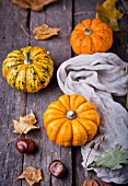 An arrangement of pumpkins with autumn leaves and chestnuts
