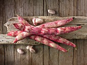 Freshly picked borlotti beans on a wood background