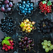 Small baking tins filled with purple and green grapes, raspberries, sour cherries, blueberries, blackberries, red and black currants and gooseberries