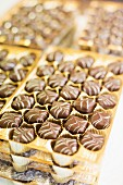 Chocolate pralines in gold trays