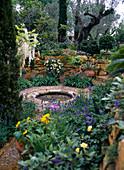 MEDITERRANER Garten auf der CHELSEA-FLOWER-Show