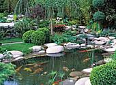 Teich mit Kieselsteinen, Buchs und Kies