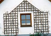 Holzspalier als Klettergestell an einer Hauswand